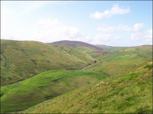 Upper Coquetdale from Broadside Law