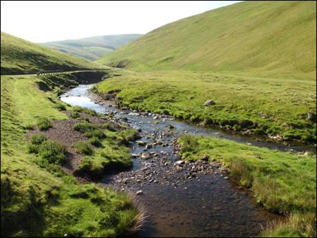 The Rowhope Burn meets the River Coquet