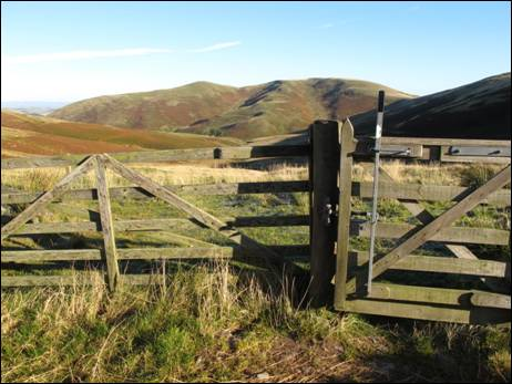 Piper`s Faulds gate